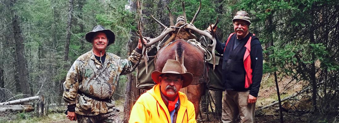 Elk 2015 Hunt