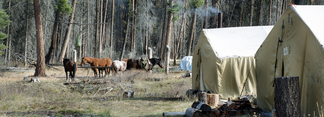 Elk-Hunting-Camp-Pack-Trip-Montana