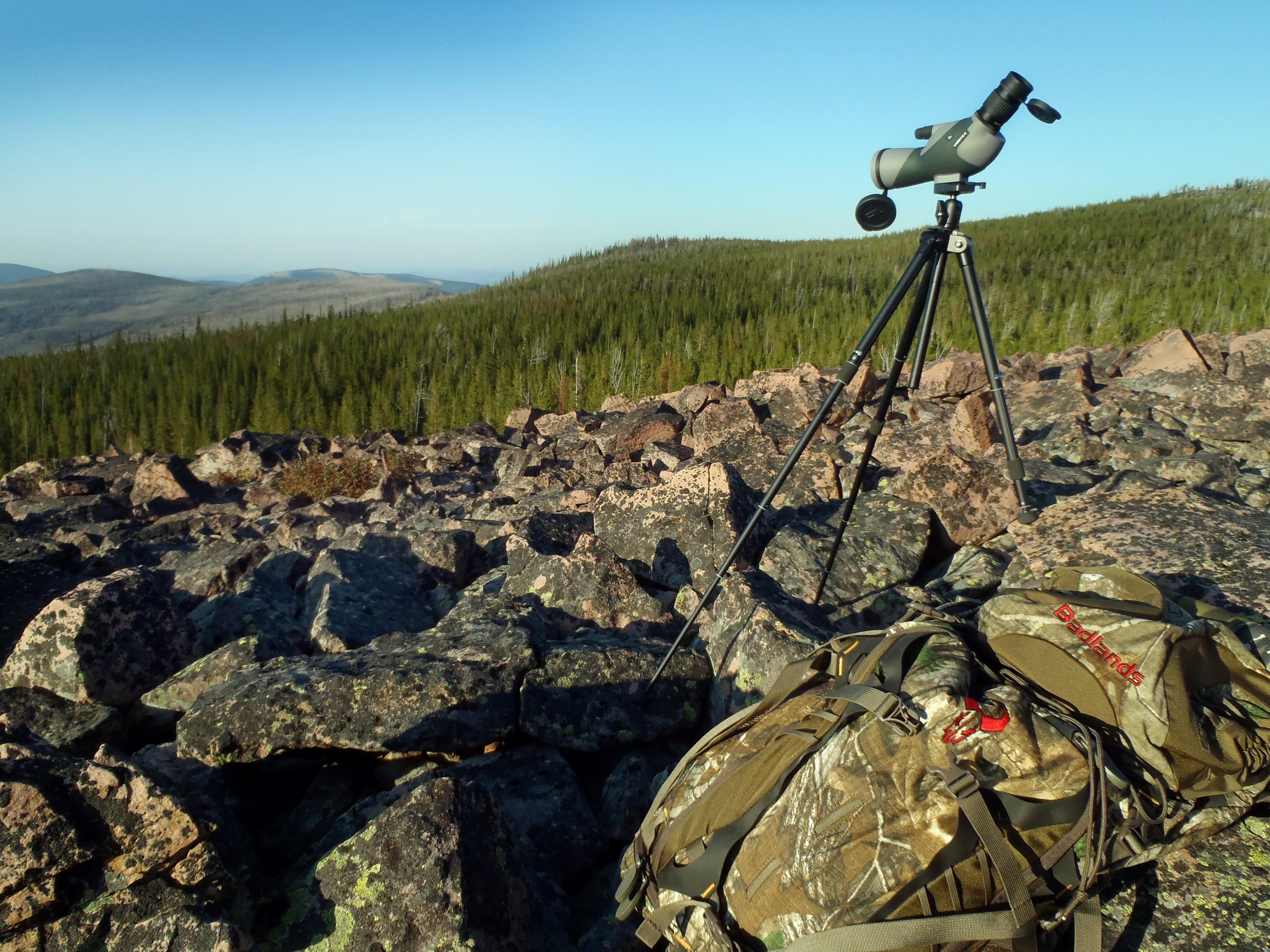 Spotting elk on an elk hunting trip in Montana